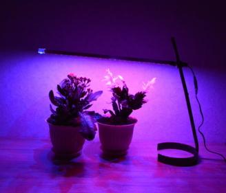 Настольная светодиодная лампа с подставкой для подсветки рассады, цветов в домашних условиях. Фито LED лампа-светильник.
