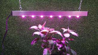 Фитосветильник полного спектра для рассады. Фитолампа светодиодная для растений. Фитолампа энергосберегающая для цветов.